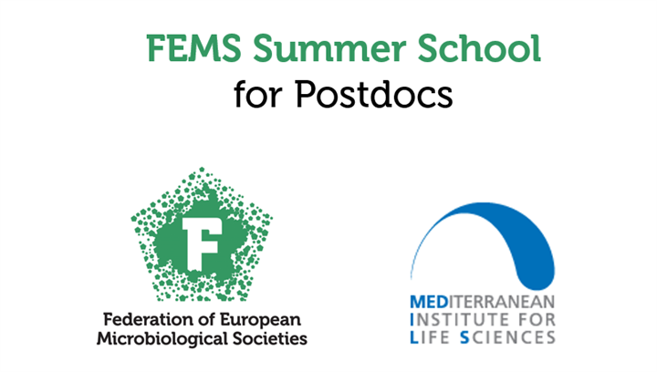 The FEMS Summer School for Postdocs